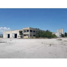 Atalanti Industrial land plot of 47,400 sq.m. with buildings of 13,500 sq.m.