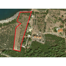 Vivos Tragana unique plot 9 acres