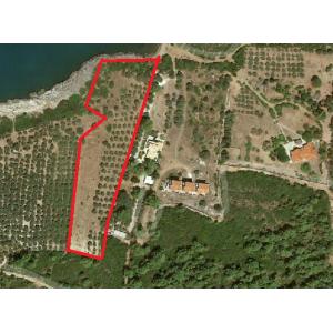 Vivos Tragana unique plot 9 acres