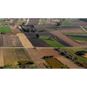 exarchos  parcels for sale 35 acres